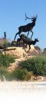 deer statue - DXC